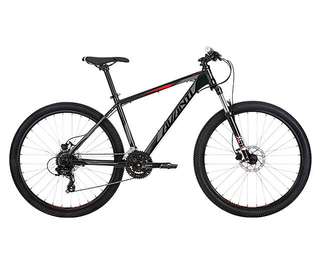 Montari 2 | Avanti Bikes