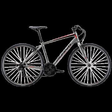 Road Bikes | Avanti Bikes