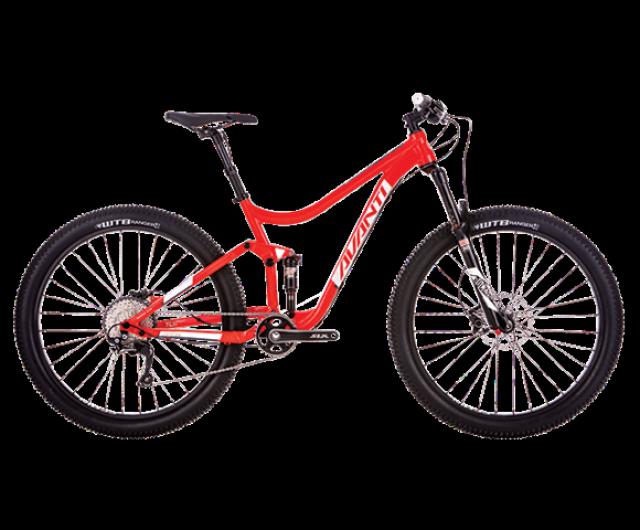 Competitor S Plus 2 | Avanti Bikes